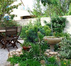 Plantes Et Am Nagement Jardin M Diterran En 79 Id Es Jardins Sentiments Et Agaves