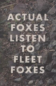 Foxes for Fleet Foxes