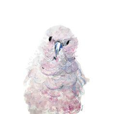 Parrot. Illustration by Sokru, Outi Virtanen. www.sokru.com