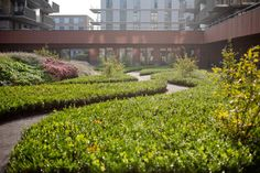 Zonnehuis_Care_Home_Patio-Residential-park-04 « Landscape Architecture Works | Landezine