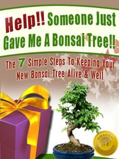 Help! Someone Just Gave Me A Bonsai Tree! The 7 Simple Steps To Keeping Your New Bonsai Tree Alive & Well (Bonsai For Beginners) by Christine Taylor, http://www.amazon.com/dp/B008BFXQFM/ref=cm_sw_r_pi_dp_kIxkrb0M2X77B