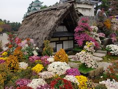 Gardens at Nagoya Castle, Japan