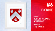 The Top Ten Most Popular Irish Surnames from Painted Clans. Hand painted Irish coat of arms with a modern twist. Wedding Anniversary Gifts, Wedding Gifts, Personalized Wind Chimes, Irish Coat Of Arms, Irish Roots, Irish Men, Surnames, Most Popular, Top Ten