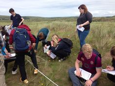A' Level students undertake field work on dune succession led by local experts from the Braunton Countryside Centre on the Braunton Burrows