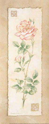 Rose by  Pamela Gladding