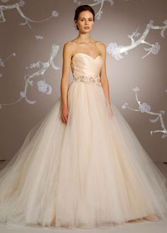 I saw this on Say Yes to the Dress.  This dress makes me want a real wedding...  I'm in love.