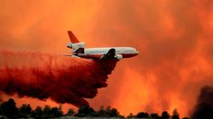 No containment of wildfire near Prescott United States, Arizona, United States Forest Service, American Red Cross, Granite Mountain, Kaibab National Forest, Yavapai College, Yavapai County Arizona, Prescott, Prescott National Forest