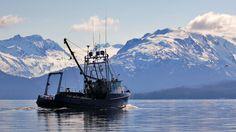 Fishing boat having left the docks in Homer, Alaska