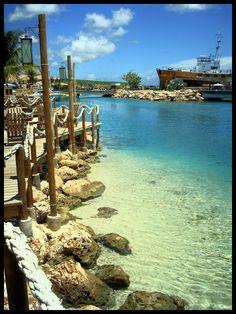 Clear water, Sea Aquarium Beach Curacao