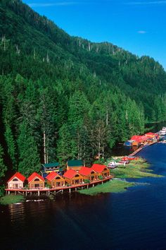 Nimmo Bay en British Columbia, #Canada Incluido en todos los programas de Nimmo Bay hay una amplia variedad de actividades que tienen lugar en y alrededor del complejo. #BestDay #OjalaEstuvierasAqui #BritishColumbia