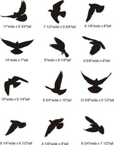 Best Bird Tattoo Designs For The Bird Lover - Discover Pins . Tattoos And Body Art bird tattoo designs Small Bird Tattoos, Bird Tattoo Men, Mini Tattoos, Trendy Tattoos, Cute Tattoos, Body Art Tattoos, New Tattoos, Tatoos, Tattoo Small
