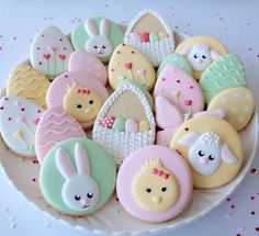 Beginner cookie decorating dates now available until the end of April. We have two  Easter themed classes in Melbourne on 8th and 9th April and we will make this pastel set. Perth, this is your set for the sold out classes in early April! Visit website in profile for all Melbourne dates. #cookiedecorating #cookiedecoratingstudio #cookiedecoratingclasses #melbourne #sydney #brisbane #perth #canberradatescoming #cookieshop #cookiesupplies