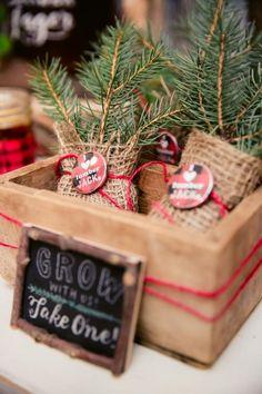 Boys Lumberjack Themed Birthday Party Tree Favor Ideas File Size782.4 KB
