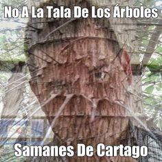 Vía @ModaPolitica  : Chuzoteca Nacional #ResistenciaCivil