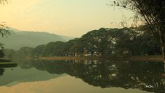 Reflection - Taiping, Perak Taiping, Reflection, Paradise, Asia, River, Outdoor, Outdoors, Outdoor Games, The Great Outdoors