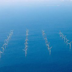 Some #positivenews - Offshore farms could provide us with cheaper power than new #nuclearpower stations. In the past few years the cost of offshore #windpower has fallen by almost a third which is a huge step as the government said they will only continue to pay for the tech if the costs continue to go down.  Wind power: We're big fans.  #renewableenergy #renewables #wind #cheappower #nonuclear #ethical #brighterfuture #tech #technology #renewabletechnology