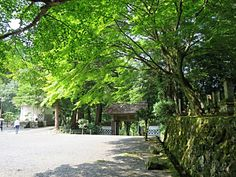 Yomeiji temple - #Tsuwano, Japan