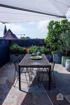 Redfern rooftop landscape design project. Photography by Natalie Hunfalvay