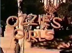 Ozzies Girls DVD TV Ozzie Nelson LOST EPISODES (1973)