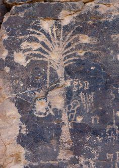 Palm rock carving in Abar Himma site - Najran Saudi Arabia