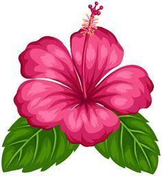 Hawaiian flower drawing flower drawing ideas only on 2 hawaiian hibiscus flower tattoo designs . Tropical Flowers, Hawaiian Flowers, Hibiscus Flowers, Exotic Flowers, Hibiscus Bush, Cactus Flower, Purple Flowers, Hawaiian Flower Drawing, Hibiscus Flower Drawing