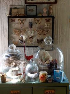 Bell Jars and Belle Displays