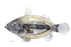 Fish Sculpture by Edouard Martinet    Via : http://web.me.com/edouard.martinet/Edouard-Martinet/banc_poissons.html