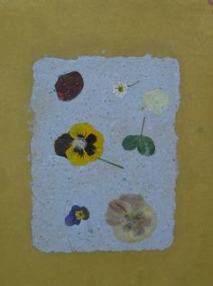 Laboratorio della carta riciclata. Esempio di un foglio steso ad asciugare.