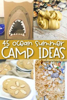 Summer Camp Themes, Summer Camp Activities, Nature Activities, Hands On Activities, Preschool Activities, Sand Dollar Cookies, Paper Plate Jellyfish, Beach Snacks, Discovery Bottles