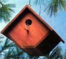 Bird house plans and Patterns for Free. Find all types of bird house woodworking plans you can build for free. Great woodworking projects to build with the kids Woodworking Books, Popular Woodworking, Woodworking Projects Plans, Youtube Woodworking, Woodworking Workbench, Woodworking Classes, Woodworking Videos, Bird House Plans, Bird House Kits
