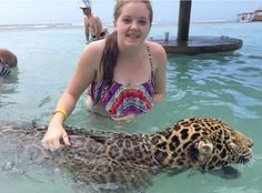 I swam with a Jaguar at Little French Key in Roatan, Honduras!!!