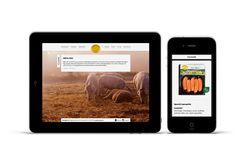 Websider Grøstad