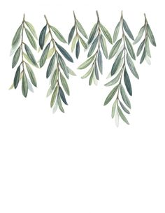 Olive Branches Print Olive Branch Leaves painting Olive