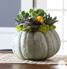 Succulent Pumpkin Planter | Inspired by Charm #fall #decor #design