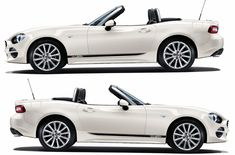 Fiat 124 Spider, Fiat Abarth, Subaru Outback, Racing Stripes, Logo Sticker, Car Brands, Grey Yellow, Car Stickers, Ford Mustang