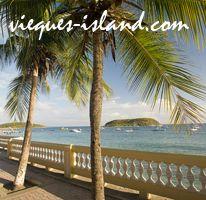 Vieques blog