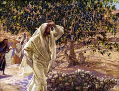 Cursing the fig tree is a parable in action representing Jesus' judgment, on barren Israel and the fate of Jerusalem for failing to receive his teaching.
