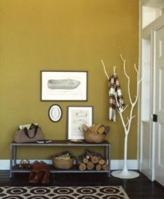 i really like the color of the walls and the rug.. great entryway idea