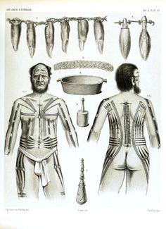 And we got loads more! Filipino Tattoos, Polynesian Tattoos, Tribal Tattoos, Tatoos, Tribal Symbols, World Tattoo, Prehistoric, Cool Cars, Body Art