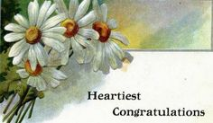 http://vintagebotanicals.blogspot.com/search?updated-min=2014-01-01T00:00:00-08:00