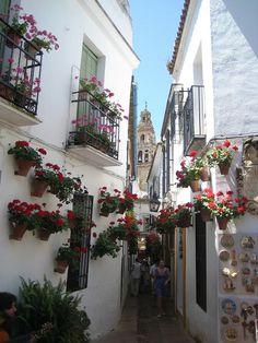 La Juderia, Cordoba, Spain | Flickr - Photo Sharing!