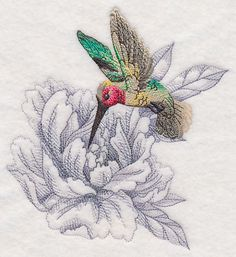 Secret Garden Peony and Hummingbird design (M12004) from www.Emblibrary.com