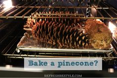 This is a MUST before decorating with pinecones. How to bake a pinecone. Get rid of the bugs!!!! Great post from ReFresh Restyle ! ! Reb@YouAreTalkingTooMuch.com
