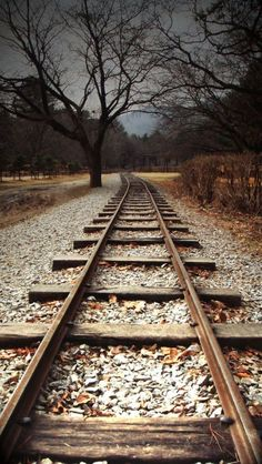 Railway tracks [location and photographer unknown]