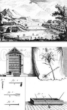 Showing the function and layout of a sugar plantation in the French West Indies. Date circa 1760.