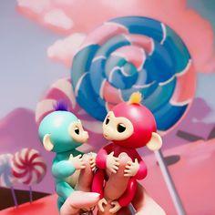 Ручные обезьянки fingerlings всегда составят компанию Вам и Вашему ребёнку! Возьмите малышку обезьянку с собой и Вам точно не придётся скучать! Все цвета в наличии! Доставка по всей России И СНГ! По всем вопросам писать в Директ! #fingerlings #игрушки #обезьянки #детскиеигрушки #купитьигрушку #дети #магазинигрушек#обезьянкифингерс #игрушкидетям #fingerlingsmonkey #8мартаподарок