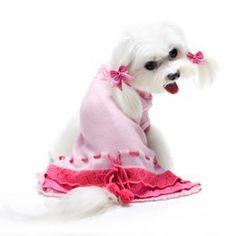 犬の服 Pooch Outfitters かわいいニットワンピース   M Pooch Outfitters http://www.amazon.co.jp/dp/B00S0TJ4SW/ref=cm_sw_r_pi_dp_yxGrvb1DP80SX