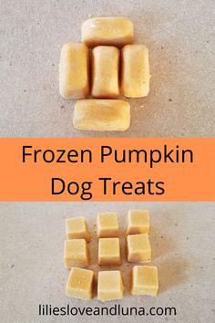 Easy two-ingredient and three-ingredient frozen pumpkin dog treats. Frozen Dog Treats, Diy Dog Treats, Homemade Dog Treats, Healthy Dog Treats, Dog Pumpkin, Frozen Pumpkin, Pumpkin Treats For Dogs, Pumpkin Dog Biscuits, Vegan Pumpkin