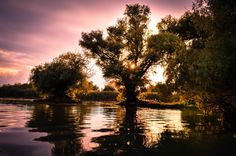 The Danube Delta for your 2016 Vacation