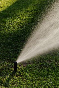 The Best Time to Water Grass, Solved is part of lawn Ideas Water - To nurture lawn without waste, ensure that you're choosing the best time to water grass—and the right amount Growing Grass, Growing Plants, Garden Sprinklers, Water Sprinkler, Lawn Care Tips, Lawn Maintenance, Landscape Maintenance, Pergola Pictures, Grass Seed